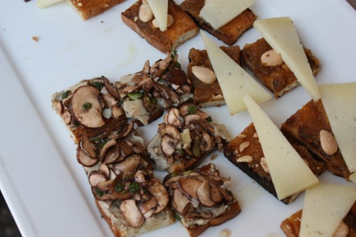 mushroom and cheese open sandwiches