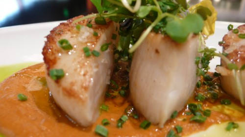 scallops with romesco sauce