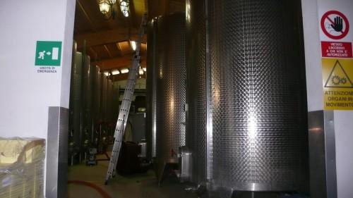 fermenting wine
