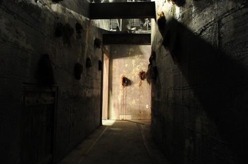 GORETORIUM_Interior_1_Photograph_by_Denise_Trucello