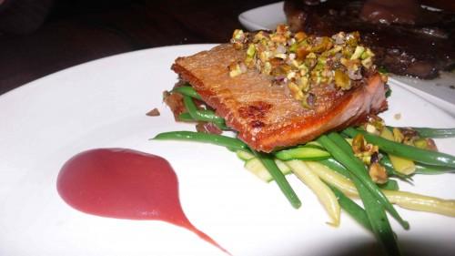 stellhead salmon